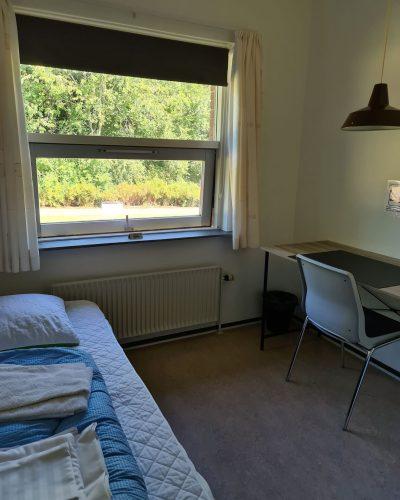 værelse med vindue ud til have